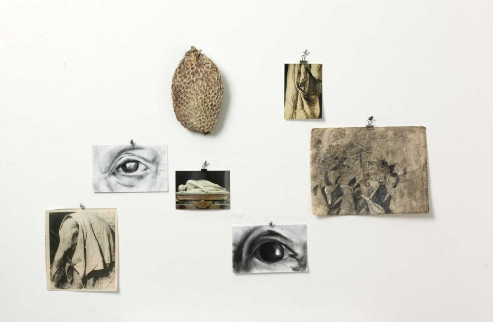 Fundus/Atelier 2007