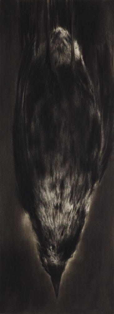 190 x 70 cm